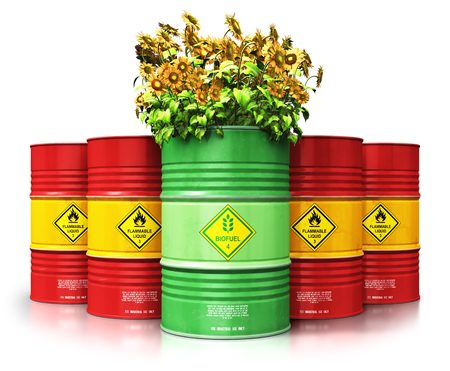 Creative abstract ecology, alternative sustainable energy and environment protection saving business concept: 3D render illustration of green biofuel or biodiesel barrel with yellow sunflowers flowers in front of the group of red metal oil, petroleum or gas drums isolated on white background with reflection effect