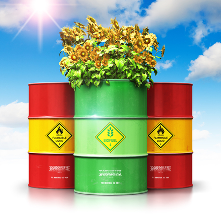 Creative abstract ecology, alternative sustainable energy and environment protection saving business concept: 3D render illustration of green biofuel or biodiesel barrel with yellow sunflowers flowers in front of the group of red metal oil, petroleum or gas drums against blue sky with clouds and sun light isolated on white background with reflection effect