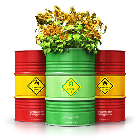 Creative abstract ecology, alternative sustainable energy and environment protection saving business concept: 3D render illustration of green biofuel or biodiesel barrel with yellow sunflowers flowers in front of the group of red metal oil, petroleum or gas drums isolated on white background with reflection effect Stockfoto