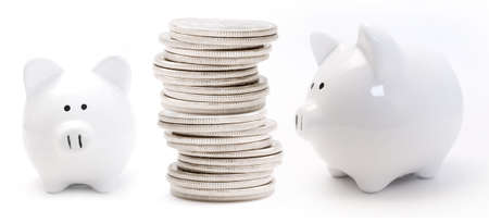 canadian cash: Piggy bank and coins Stock Photo