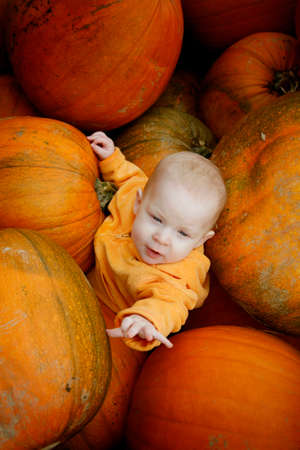 A cute little baby girl poses in a pumpkin patch Stock Photo - 1455288