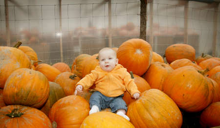 darling: A cute little baby girl poses in a pumpkin patch