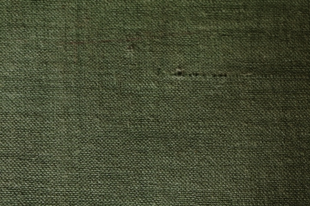 Old green fabric book cover texture Stock Photo - 14421437