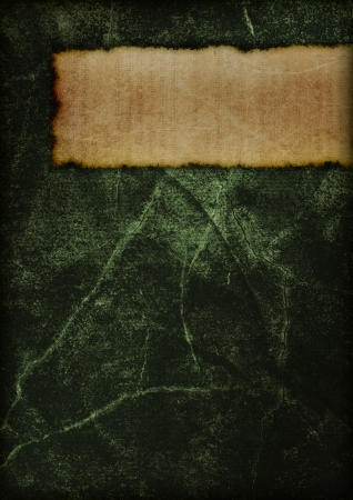 Cover of a mysterious old book. Dark and magical. Green. photo