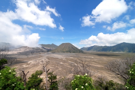 bromo panorama day photo
