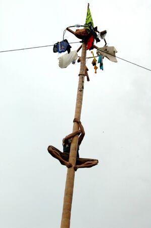 pinang: Panjat pinang
