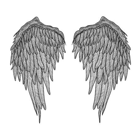 tatouage ange: Ailes d'anges. Illustration noire et blanche. Tatouage Illustration