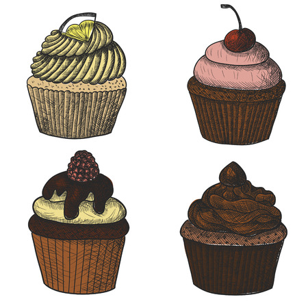 chocolate cupcake: Cupcakes set. Lemon cupcake, cherry cupcake, raspberry cupcake and chocolate cupcake. Sketch.