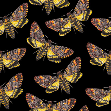 Deaths-head moth seamless pattern. Gothic background