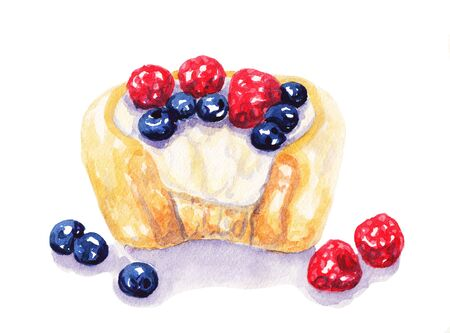 blueberry cheesecake: Watercolor fruit tart cheesecake with berries on white background