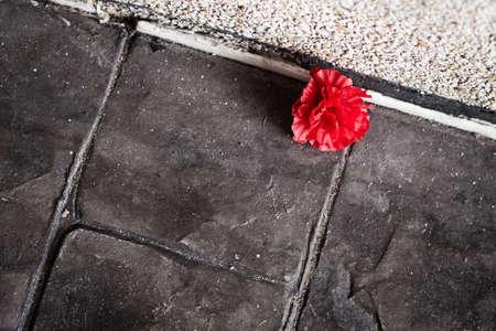 black block: El rojo se levant� en el bloque negro