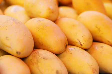 Selling yellow mango in Phuket market photo