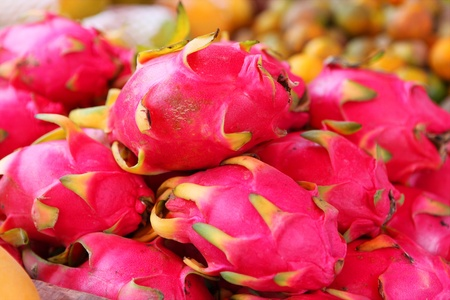 Lot of dragon fruits in the tropical market  photo