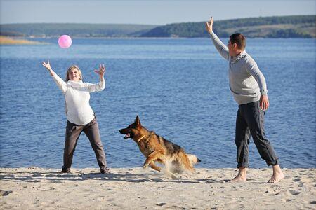 large ball: Pregnant woman and man playing ball with german sheep-dog Stock Photo