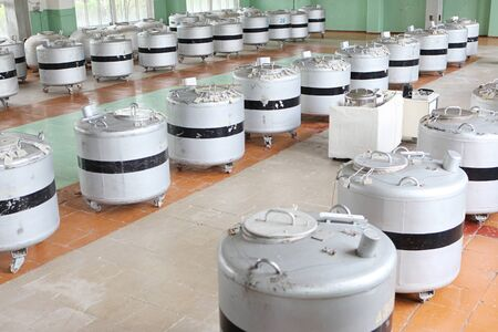 scientific farming: Tanks with liquid nitrogen in laboratory storage