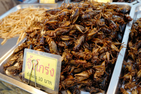 Fried insects on street market in Thailand