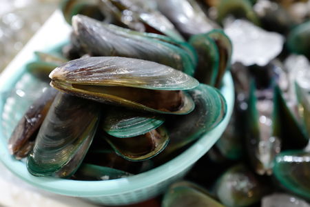 Raw Mussels on market in Thailand