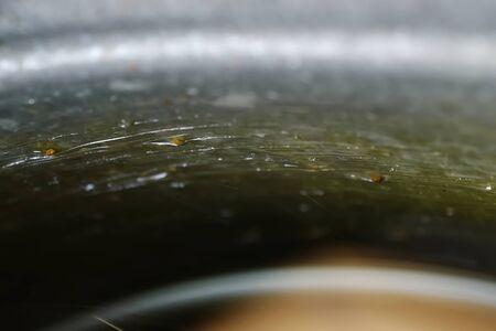 Splashes of sweet honey on device walls for gathering honey