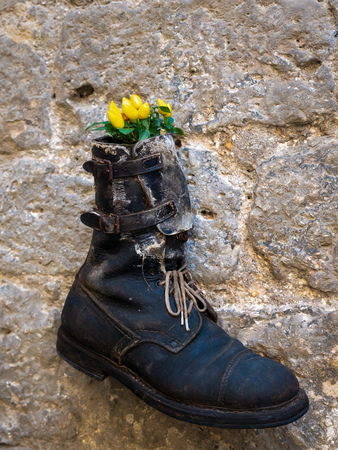 An old shoe turned into a flower vase