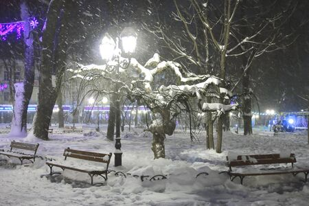 impenetrable: The picture was taken in the city of Odessa in Ukraine. The picture shows a city park covered with snow at night.