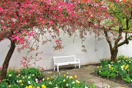 freising: The picture was taken in Germany in the town of Freising. The picture shows the bench for rest in spring garden. Stock Photo