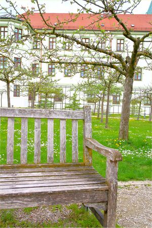 freising: The picture was taken in the spring in Germany in Freising. The picture shows an old bench in the spring garden. Against the background can be seen a flowering tree and a lawn with grass and wildflowers. Stock Photo
