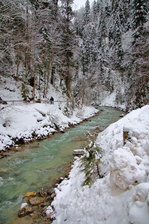 Photo taken in Germany near the resort town of Garmisch-Partenkirchen. The photo shows a mountain river flowing through a dense forest along the bottom of the gorge.