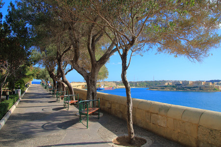 The photo was taken in the city garden of Valletta in Malta called Lower Barrakka Gardensin the month of January.. The picture shows the garden alley with benches, where you can admire the view of the bay of the island.