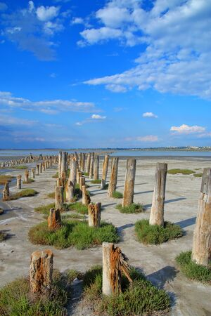 Photo taken in Ukraine. The picture shows the landscape of the estuary near Odessa called Kuyalnik. The photo shows wooden piles - the remains of piers.