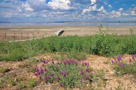 In the photo there is a landscape of sparse vegetation of the steppe near a salty estuary called Kuyalnik.