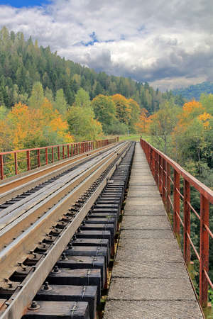 The picture was taken in the city of Yaremcha in the Carpathian mountains. In the photo there is a railway bridge through the mountains covered with autumn forest.