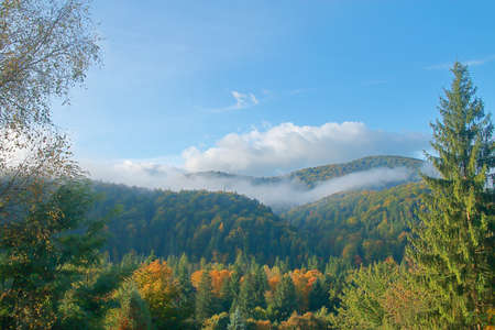 The photo was taken in the mountains called the Carpathians. In the picture, a sunny morning illuminates the mountains covered in the autumn forest, dispersing the remnants of the fog
