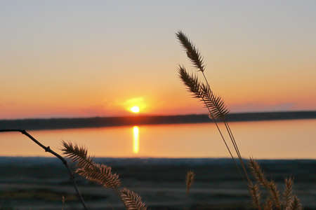The photo was taken in Ukraine, in Odessa region. The picture shows a sunset over a salt estuary in the wild steppe. 免版税图像
