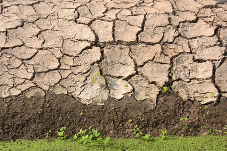 barrenness: cracked clay ground into the dry season Stock Photo