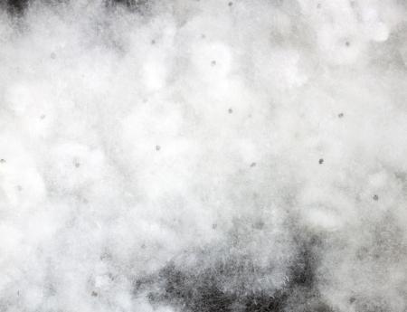Fleurs blanches, de fibres de coton, le coton, viande tendre. Banque d'images - 18861097