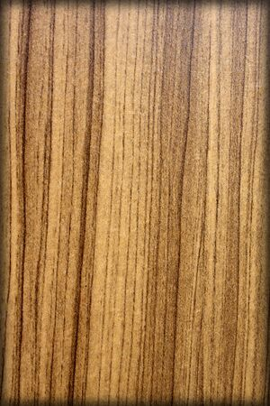 Background wallpaper wood wooden texture dramatic light, natural pattern. Stock Photo - 19095928