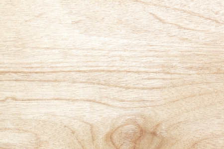 Compressed Wood texture made by nature
