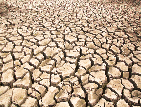 fissures: Drought breaks ground fissures of the ground.