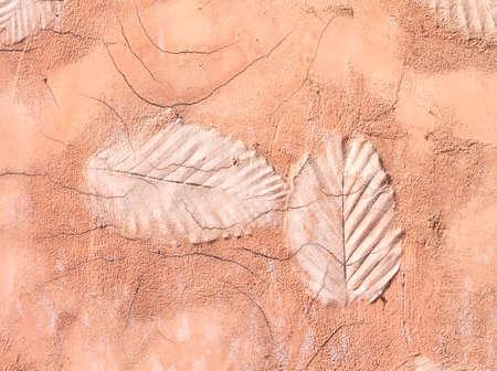 leaf shape: Leaf shape cement floor wall background texture pattern.