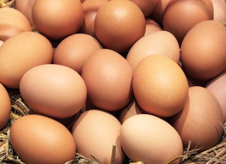 Eggs Many eggs foods with high vitamin sphere. Standard-Bild