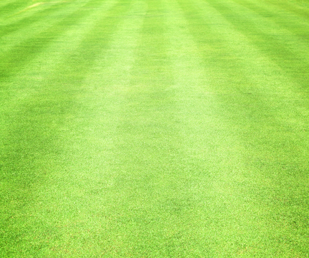 Green lawns golf courses and football pitches.