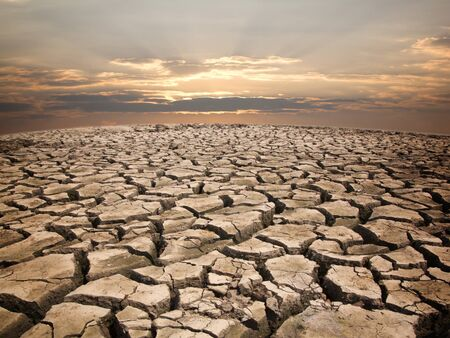 desierto: Tierra de sequ�a contra el atardecer de fondo patr�n de la naturaleza.