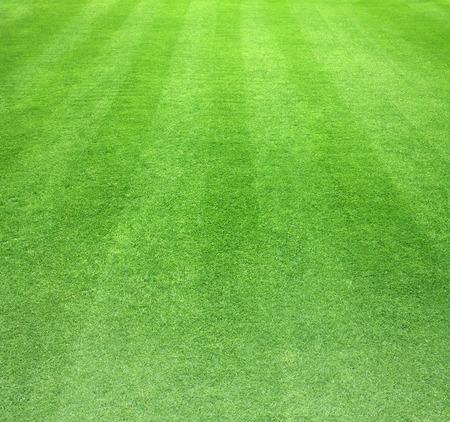 Parcours de golf pelouse verte texture abstrait. Banque d'images - 39540038