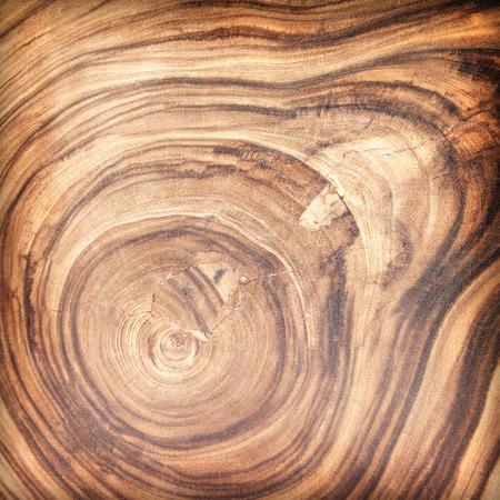 porte bois: Brown bois de feuillus de planche de bois surface sèche abstrait.