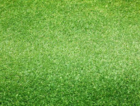 terrain foot: Parcours de golf pelouse verte herbe nature fond. Banque d'images