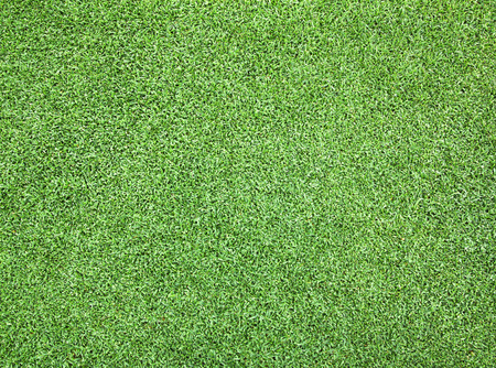 Golf Courses green lawn pattern textured background. photo
