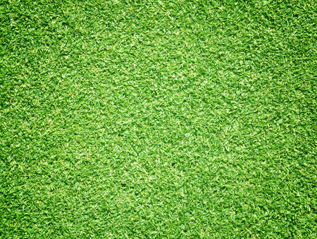 bluegrass: Golf Courses green lawn outdoor background texture.
