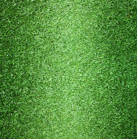 cancha de futbol: Campo de golf de césped campo de fútbol al aire libre textura de fondo con colores brillantes. Foto de archivo