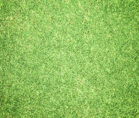 terrain de foot: Des pelouses vertes, terrains de golf, en plein air fond de terrain de football.