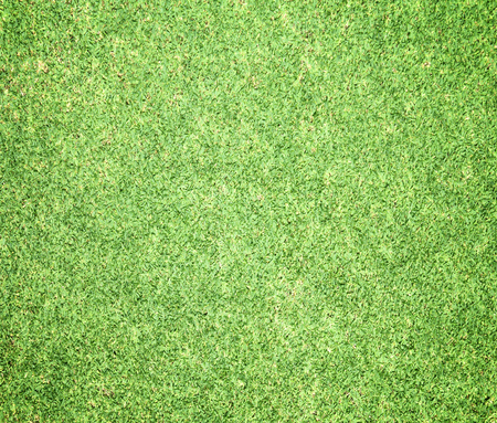 soccer background: Green lawns, golf courses, outdoor soccer field background.